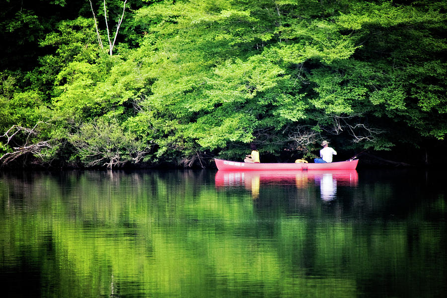 Lake Photograph - Fishing On Shady by Lana Trussell
