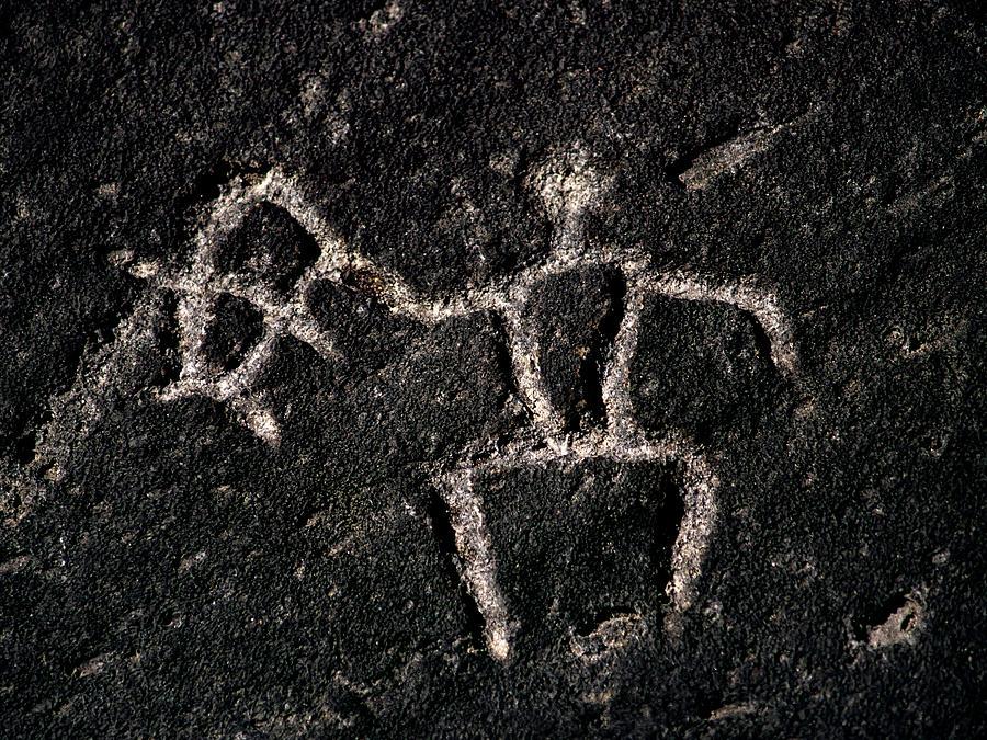 Petroglyph Photograph - Fishing Petroglyph by Christopher Johnson