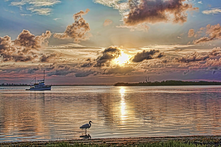 fineartamerica.com - Fishing The Shoreline by HH Photography of Florida