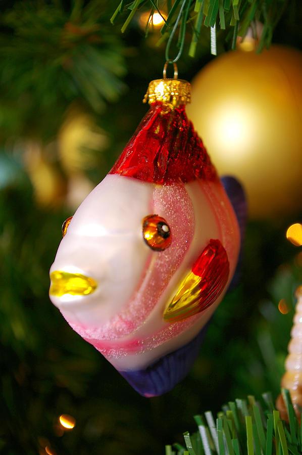 Fishy Ornament Photograph by Jera Sky