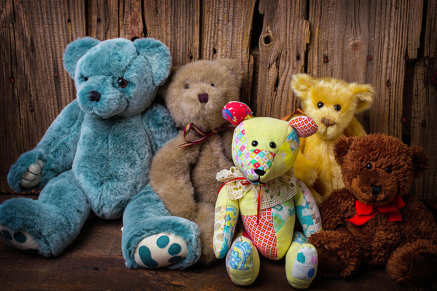 Five Photograph - Five Bears by Garry Gay