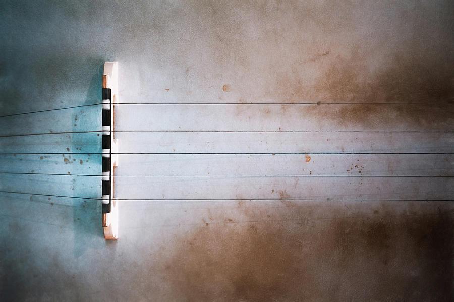 Five String Banjo Photograph