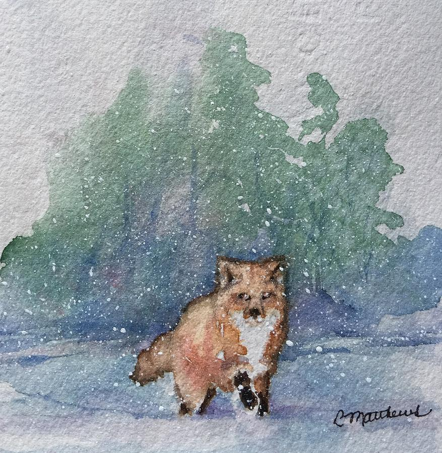 Fox in snow by Rebecca Matthews