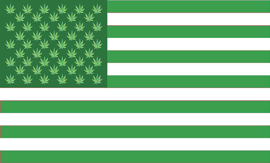 Weed Digital Art - Flag 2 by Larry Waitz