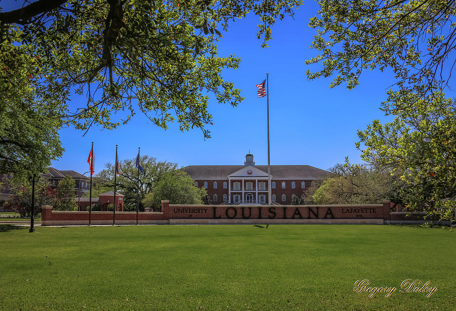 Flag At Entrance Photograph by Gregory Daley  MPSA
