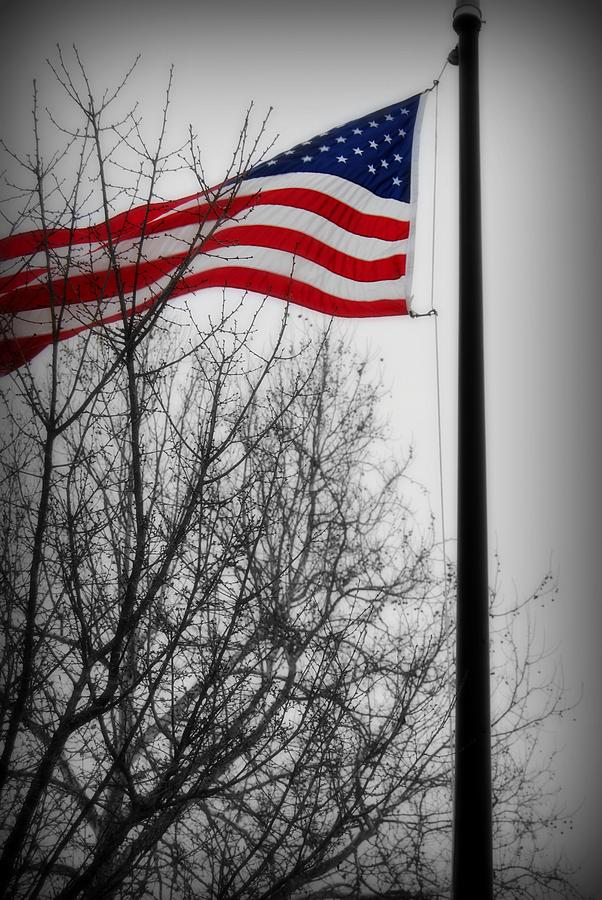 United States Photograph - Flag In December by Renae Sears