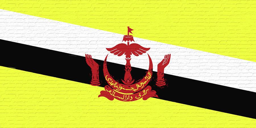 Flag Of Brunei Wall by Roy Pedersen