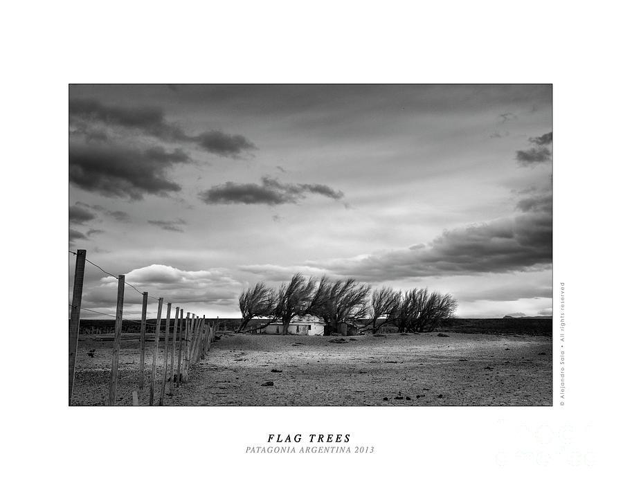 FLAG TRESS - PATAGONIA ARGENTINA 2013 by Alejandro Sala
