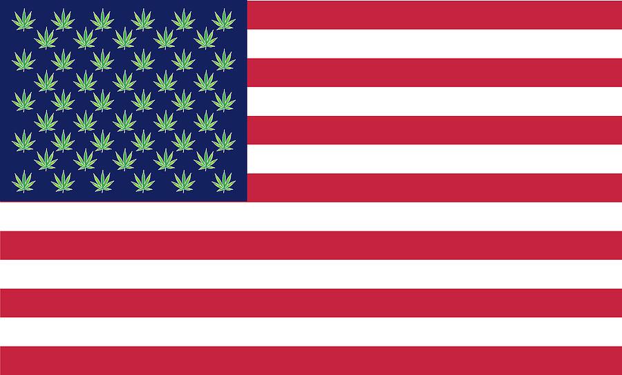 Weed Digital Art - Flag1 by Larry Waitz