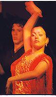 Flamenco Photograph - Flamenco by John Bradburn