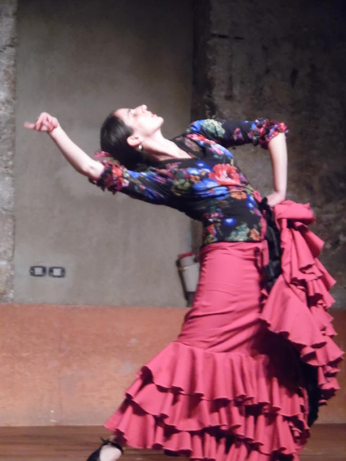 Flamenco Passion by Esther Newman-Cohen