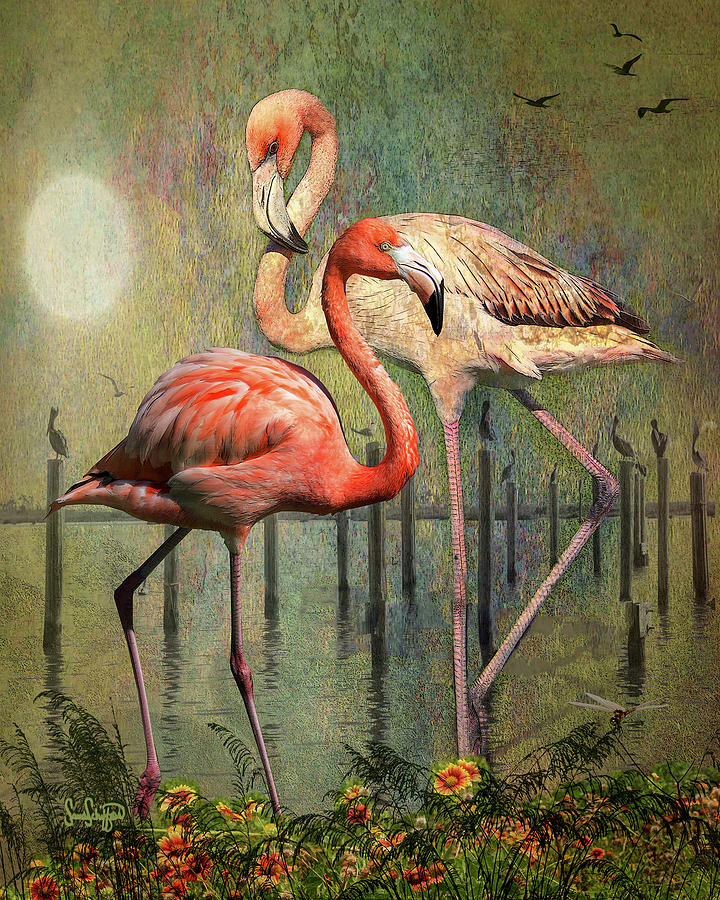 Flamingo Evening  by Sandra Schiffner