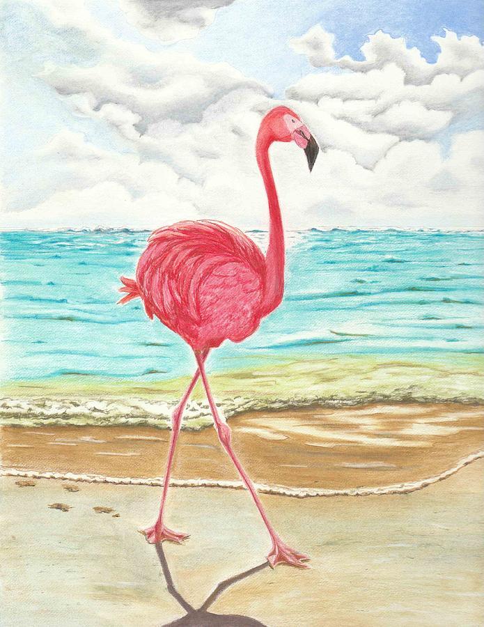 картинки карандашом фламинго средние лимфогранулема