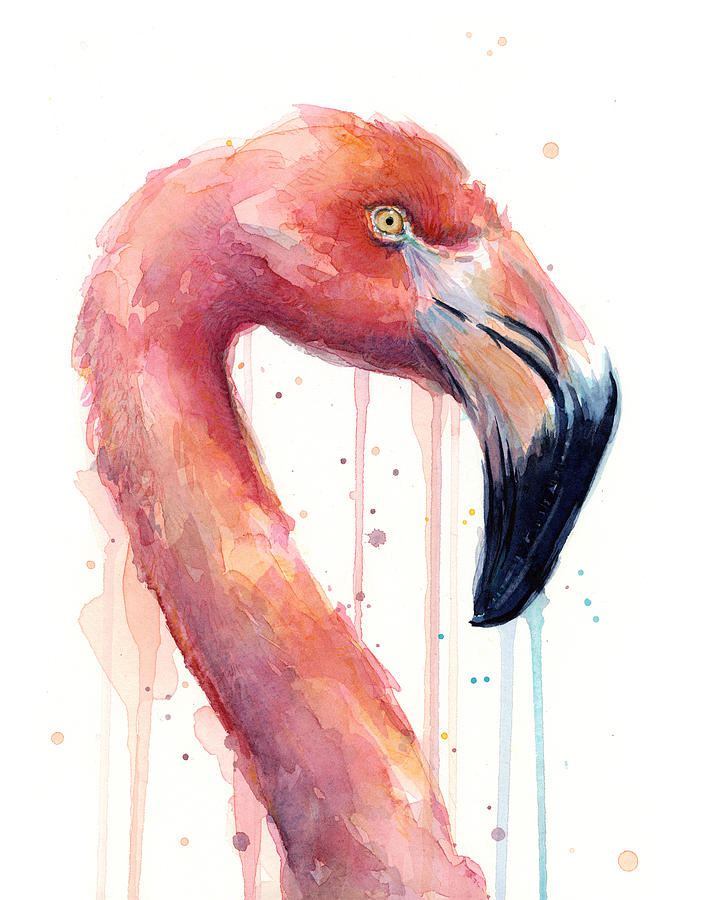 Watercolor Flamingo Painting - Flamingo Painting Watercolor - Facing Right by Olga Shvartsur