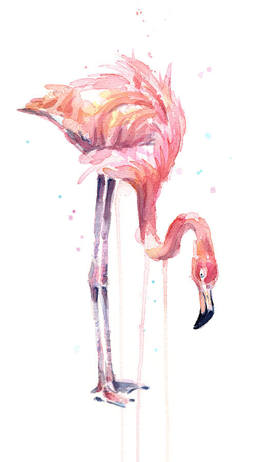 Flamingo Painting Watercolor Painting By Olga Shvartsur