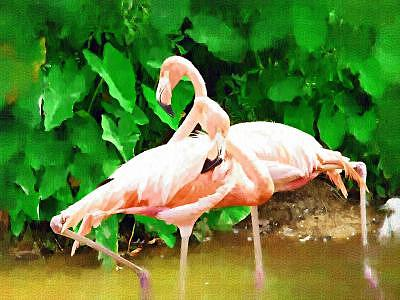 Flamingo Tango Painting by Billy Shaw