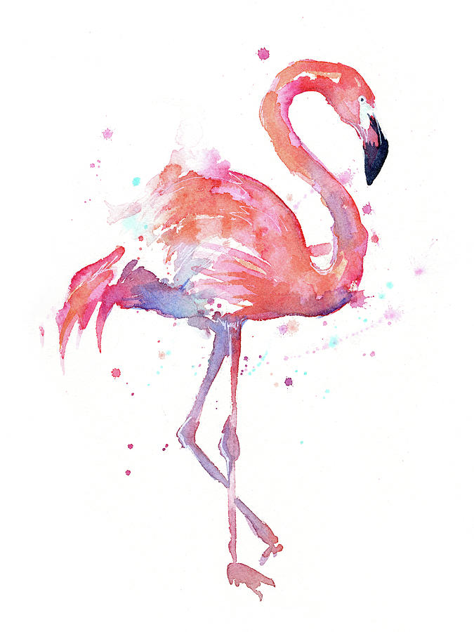 Flamingo Watercolor Facing Right Painting By Olga Shvartsur