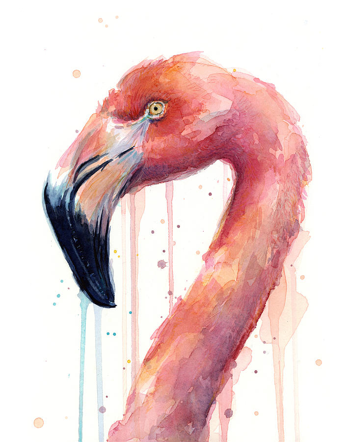 Flamingo Watercolor Illustration Painting by Olga Shvartsur