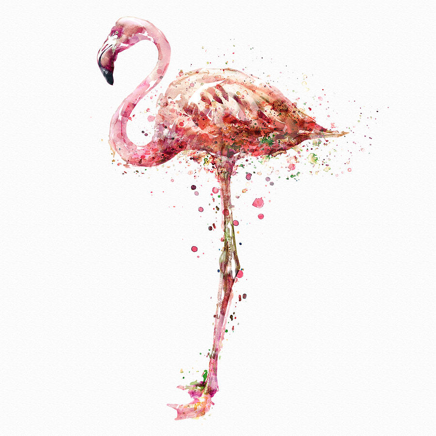 Flamingo Watercolor Painting Mixed Media By Marian Voicu