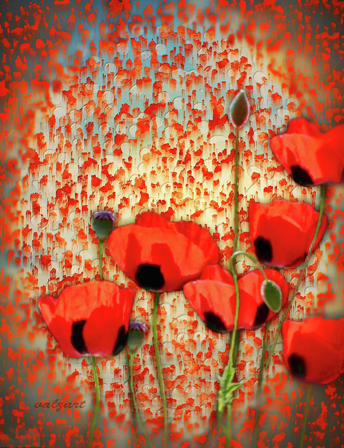 Flanders fields by Valerie Anne Kelly