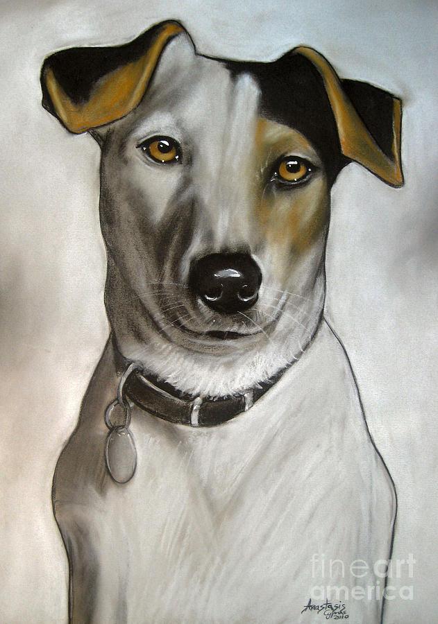Dog Drawing - Flappy by Anastasis  Anastasi