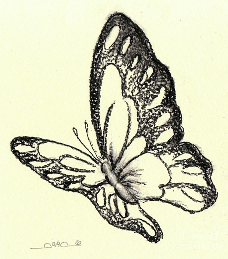 Butterfly Drawing - Flasher by Iamthebetty Tbone