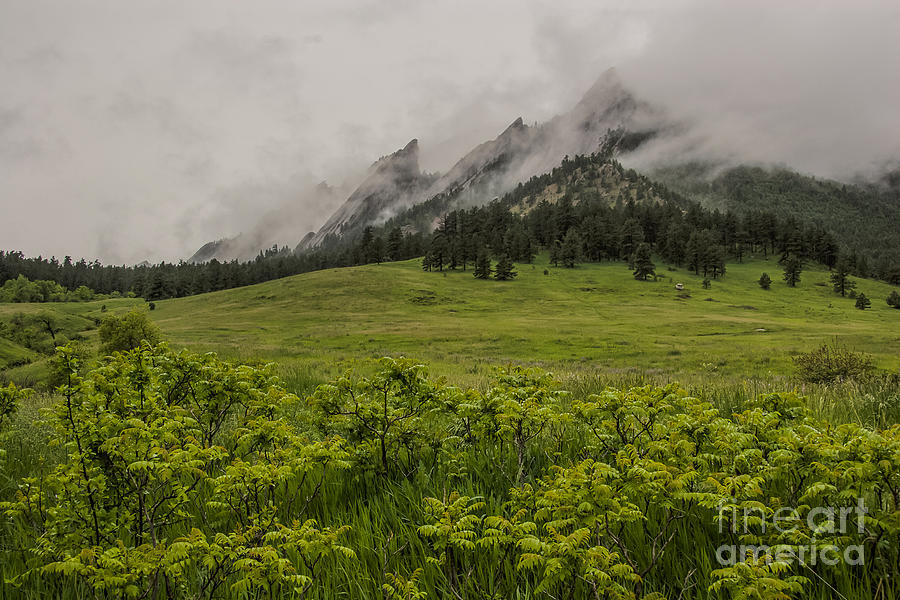 Area Photograph - Flatirons Spring Rain by Greg Summers