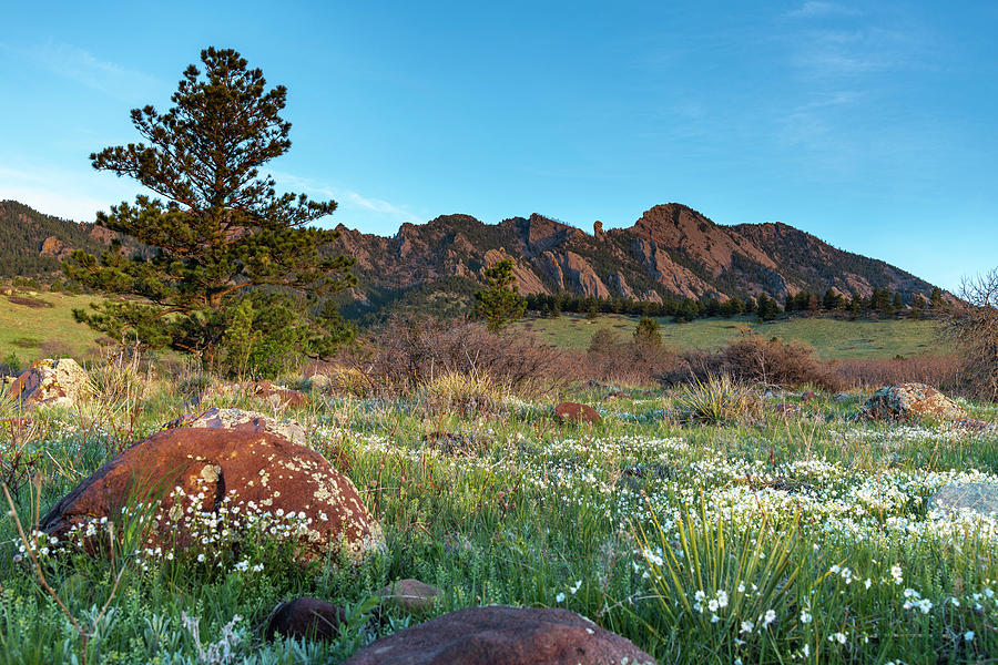 Flatirons Sunrise by Philip Rodgers