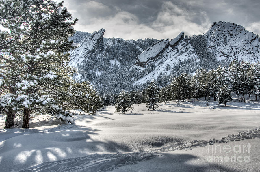 Area Photograph - Flatirons Tracks by Greg Summers