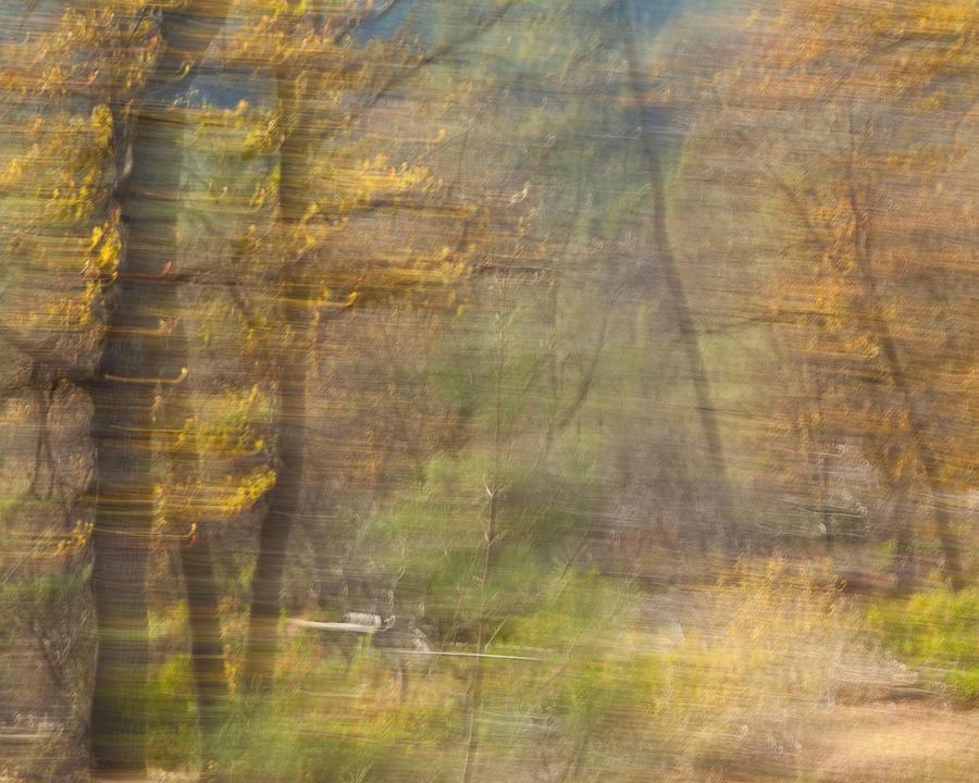 Autumn Photograph - Fleeting Autumn by Denise Dethlefsen