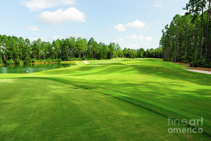 Fleming Island Golf Club Photograph