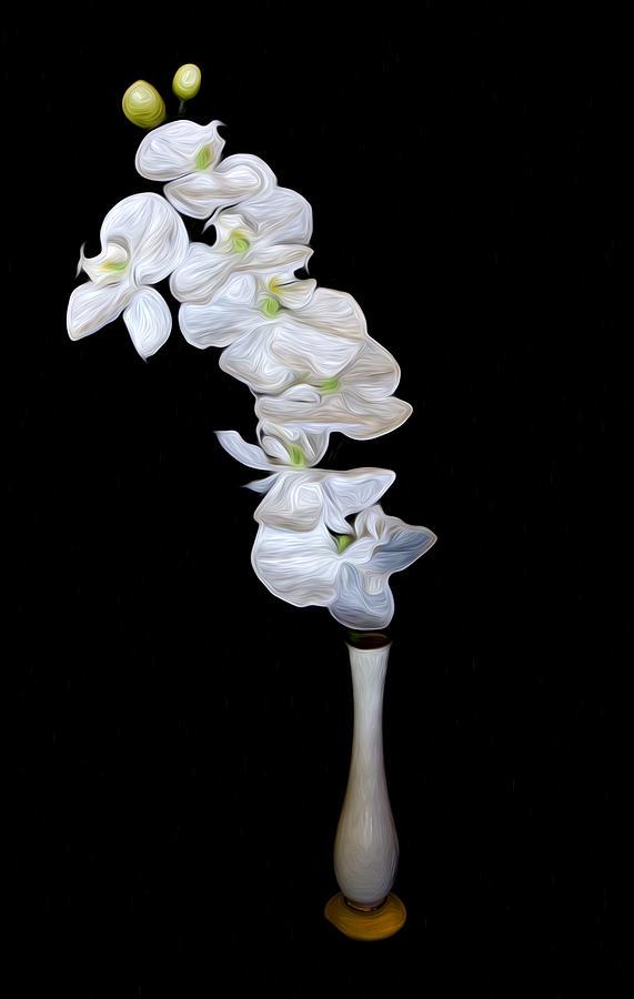 Flower Photograph - Fleur Blanche by Cecil Fuselier