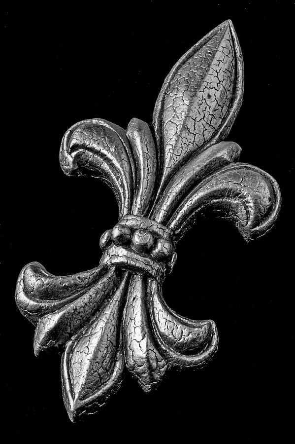 Fleur De Lis In Black And White Photograph By Garry Gay