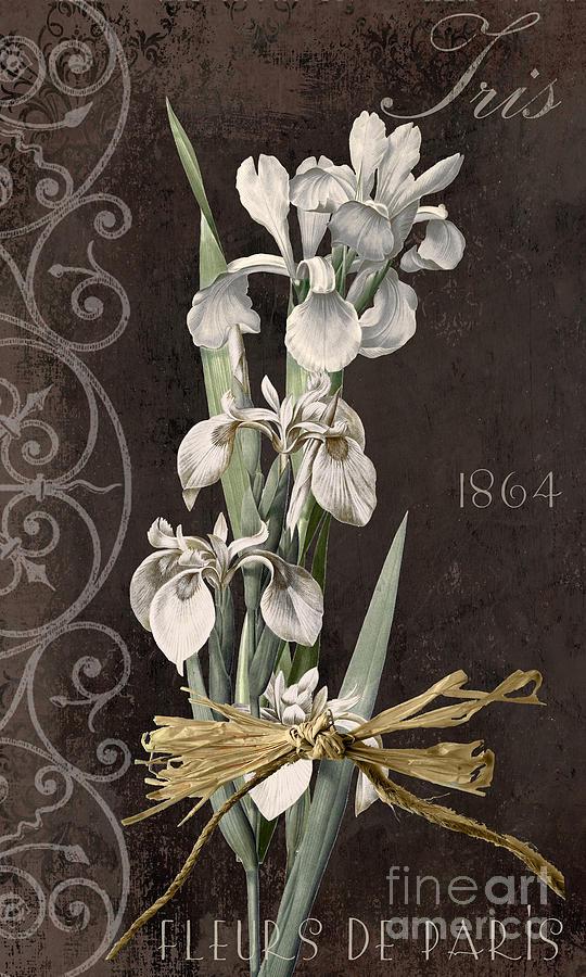 Iris Painting - Fleurs De Paris II by Mindy Sommers
