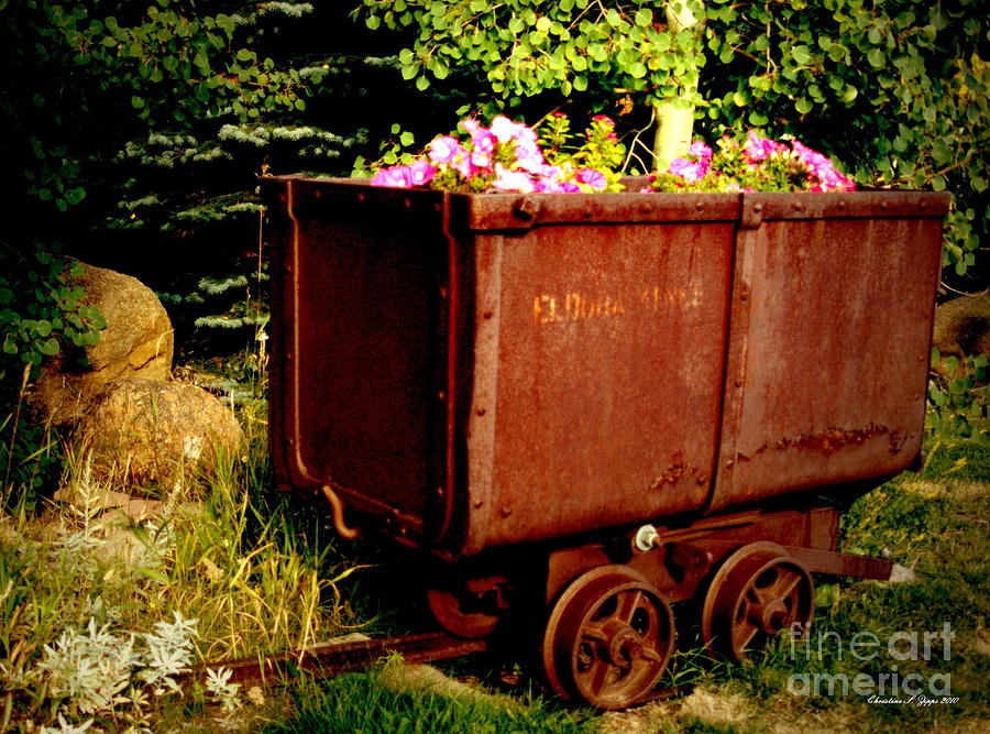 Rustic Photograph - Fleurs In Rustic Ore Car by Christine S Zipps