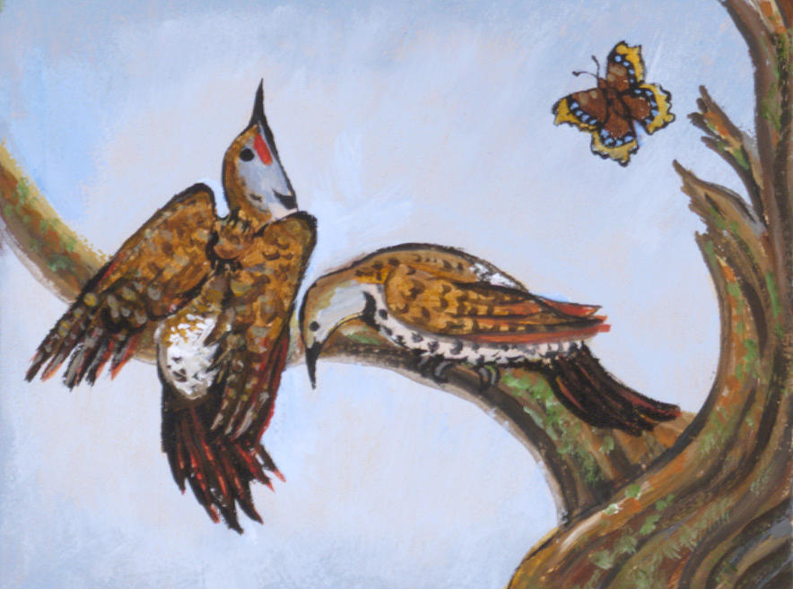 Bird Painting - Flickers Dancing Wild Animal Vignette From River Mural by Dawn Senior-Trask