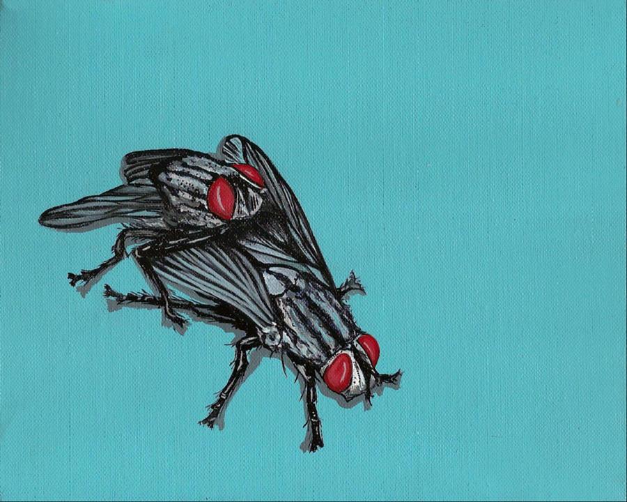 Insects Painting - Flies by Jude Labuszewski