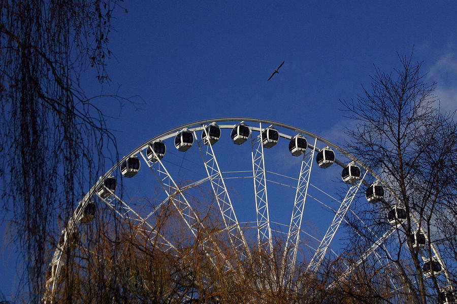 London Photograph - Flight Of The Ferris by Jez C Self