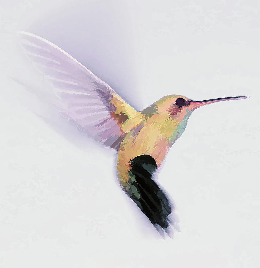 Flight of the Hummingbird by Barbara A Lane