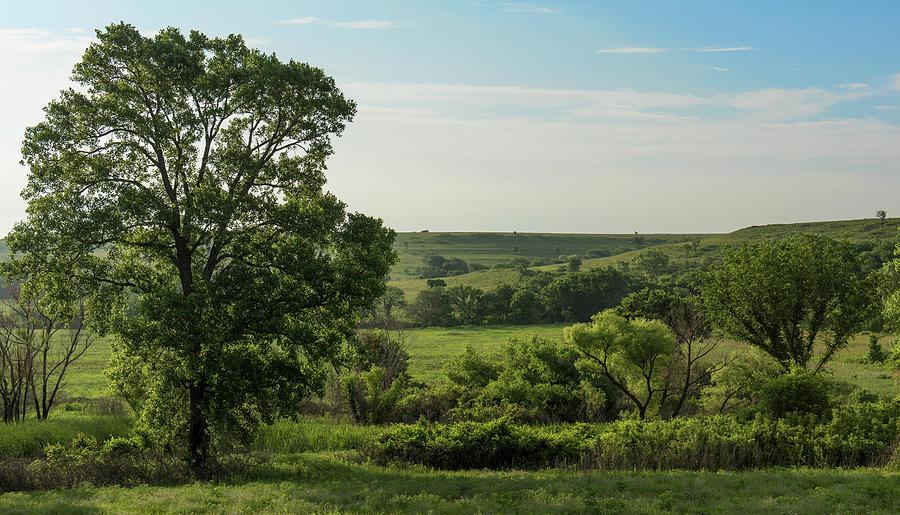 Kansas Photograph - Flint Hills Landscape 784 by David Drew