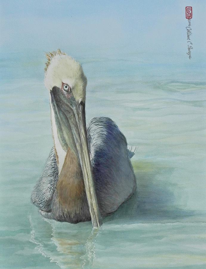 Pelican Painting - Floating Brown Pelican by Cathleen Savage