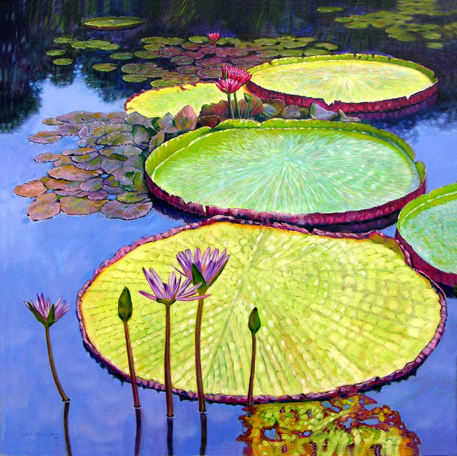 Garden Pond Painting - Floating Galaxies by John Lautermilch