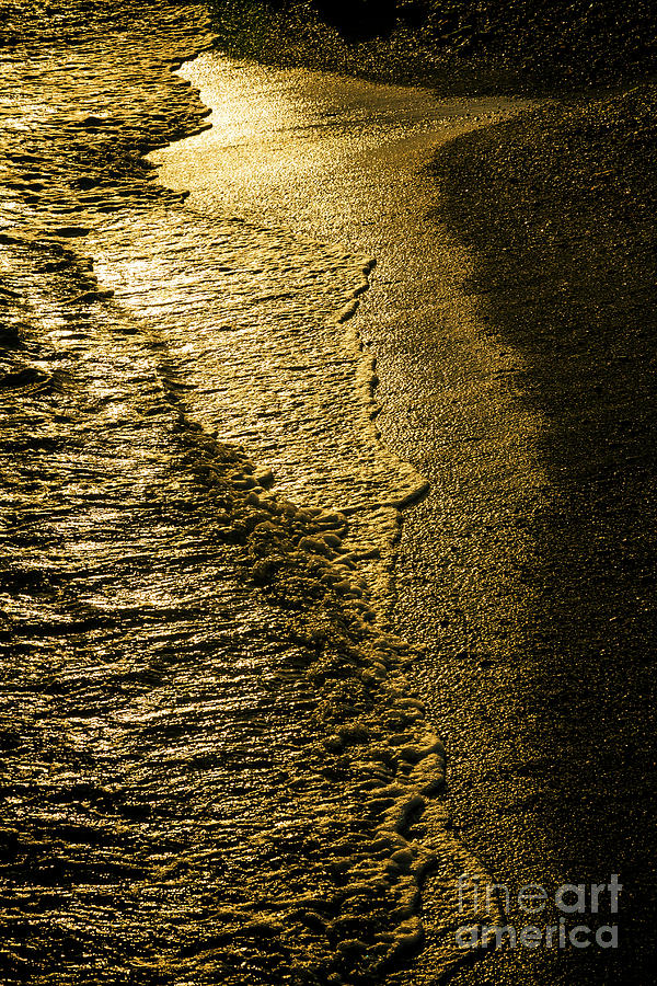 Floating Gold At The Beach Photograph