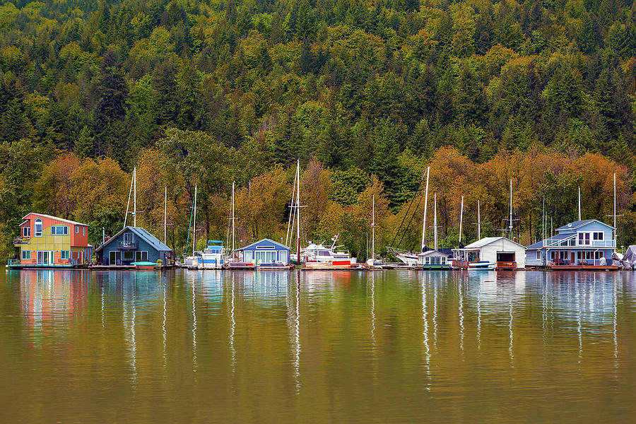 Houseboat Photograph - Floating Homes Along Multnomah Channel In Portland Oregon by David Gn