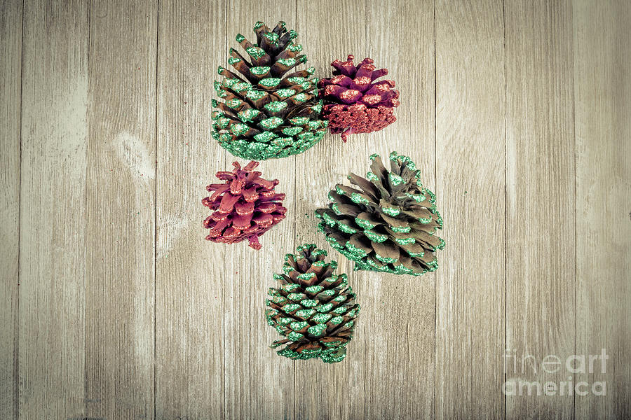 Floating Pine Cones Photograph