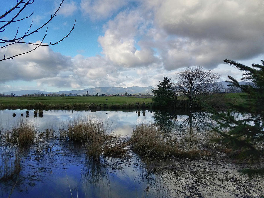 Flooding River, Field and Clouds by Chriss Pagani