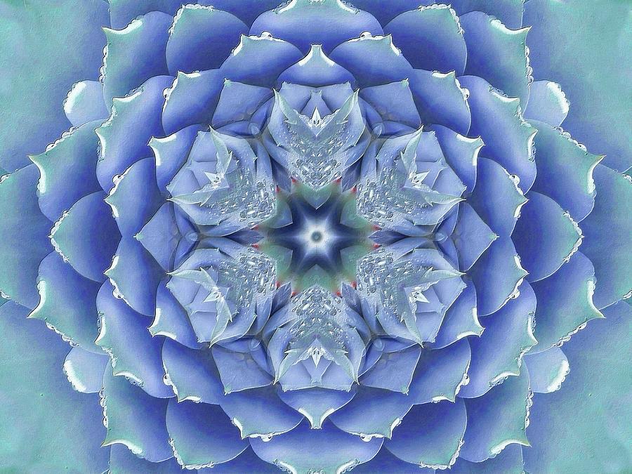 Flora Muse Mandala by Diane Lynn Hix