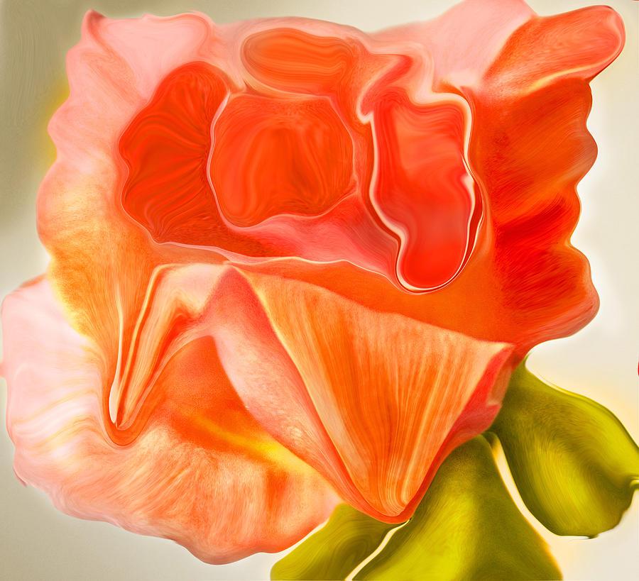Flower Photograph - Flora Vita Bella by Robert OP Parrish
