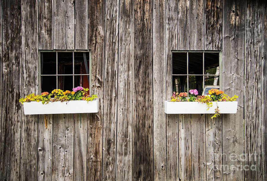 Floral Barn Planters by Glenn Gordon