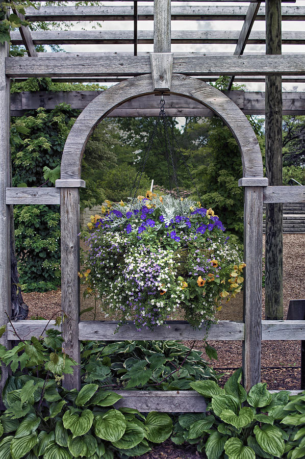 Floral Mixed Media - Floral Garden View by Thomas Woolworth